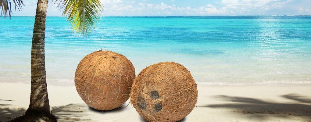 Kokosnootkegelen